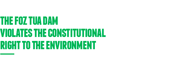 direitoconstitucional