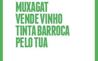 banner-MUXAGAT